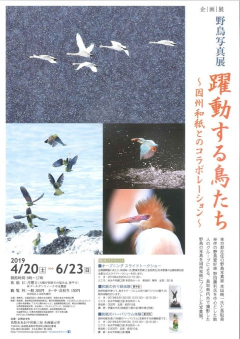 Wild bird photo exhibition